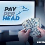 Pay Per Head Management Tips